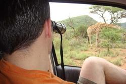 I spy a Giraffe.jpg