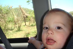 James and Giraffes.jpg
